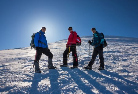 glückliche Freunde beim Bergwandern
