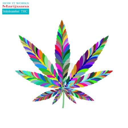 Marijuana how it works 2