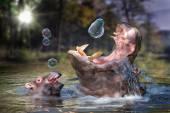 Flusspferd und seine Baby spielt mit Seifenblasen