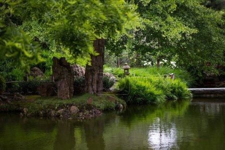 Photo pour Jardin de thé japonais en Californie - image libre de droit
