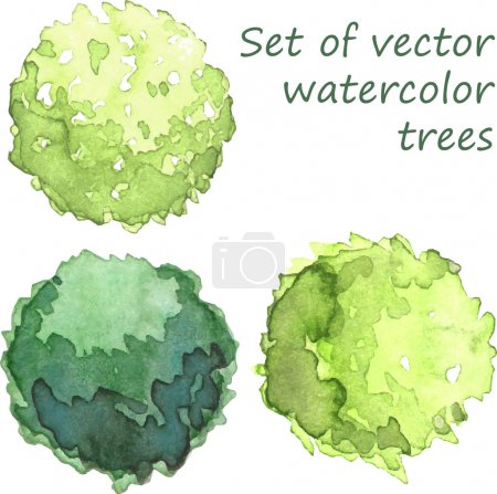 Illustration for Trees for landscape architects - Royalty Free Image