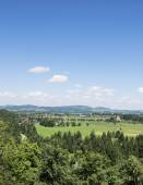 Landscape view from Hohenschwangau Castle in vertical style. Summer blue sky and beautiful nature in Bavaria, Germany