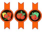 Vegetables ketchup sauce label vector illustration