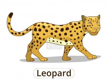 Leopard african savannah animal cartoon vector
