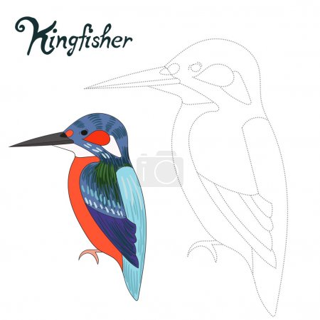 Educational game connect dots draw kingfisher bird