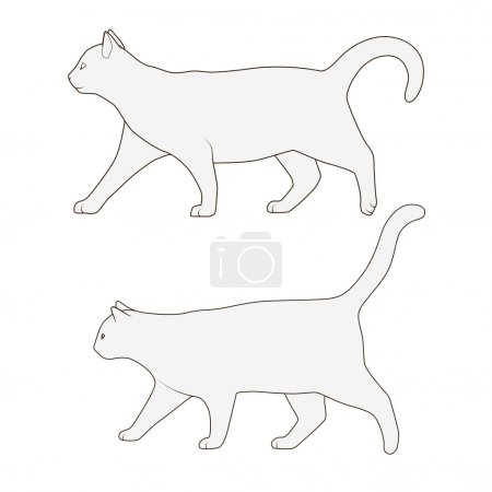 Cat side view scheme silhouette vector