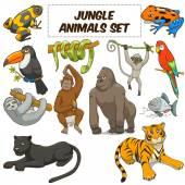 Cartoon jungle animals set vector