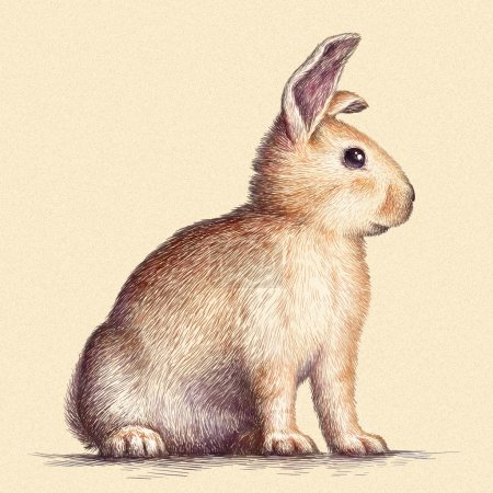 Photo for Engrave isolated rabbit illustration sketch. linear art - Royalty Free Image