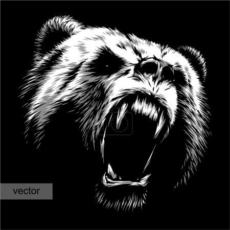 Illustration for Engrave isolated bear vector illustration sketch. linear art - Royalty Free Image