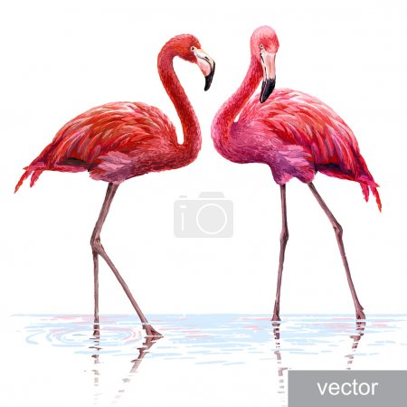 Illustration for Colorful pink vector flamingo. Realistic illustration. Blue Lagoon - Royalty Free Image