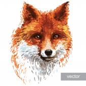 Colored fox illustration on white background