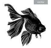 Gold fish drawn illustration underwater engraving vector