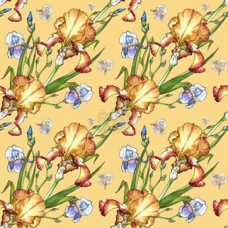 pattern with iris