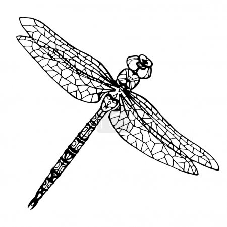 coloring object; illustration of dragonfly