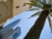 """Постер, картина, фотообои """"Palm и небоскреб Gran Torre"""""""