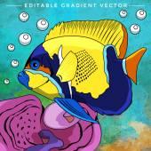 Colorful Aquarium Fish