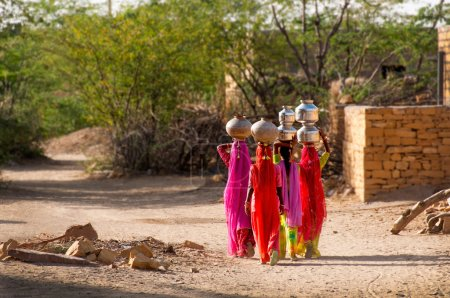 Photo for Water carriers heading home, desert village near Jaisalmer, Rajasthan, India - Royalty Free Image