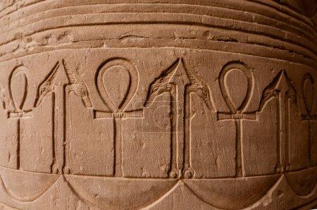 Ancient, decorative carved column at Edfu temple, ...