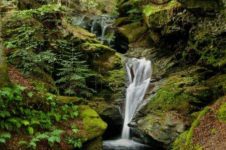 Waterfall between green stones