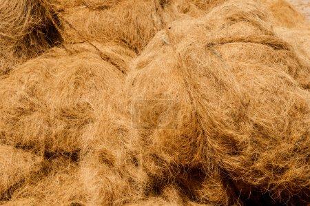 Bundles of raw coir
