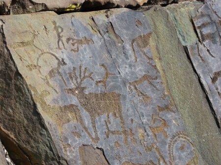 Prehistorical petroglyphs carved in rocks. Images ...