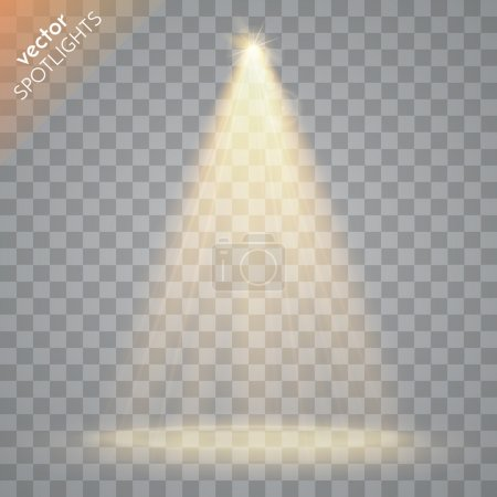 Vector Isolated Spotlight