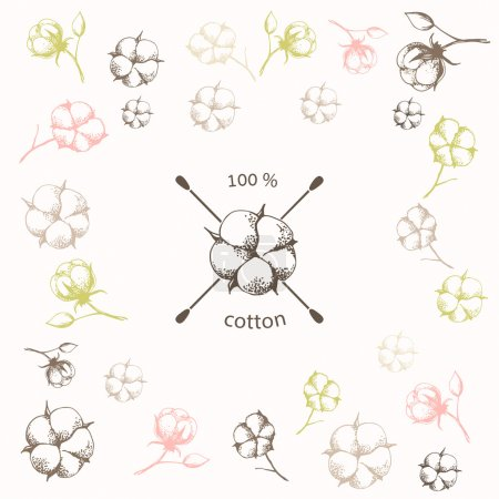 Illustration for Hand drawn cotton flower with crossed cotton swabs as hundred percents  cotton symbol on flower background.Vector illustration in eps8 format. - Royalty Free Image