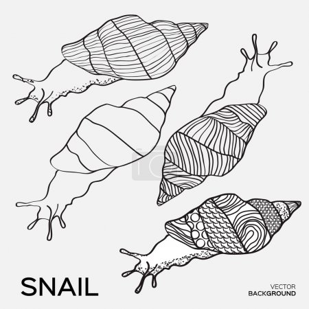 Monochrome silhouettes of snail drawing outline