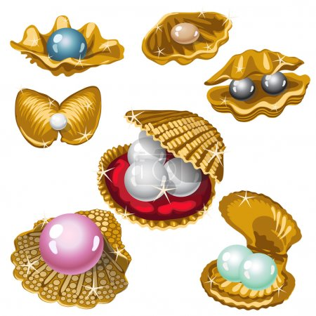 Illustration for Gold shell with white, black, pink and blue pearls. Big vector collection - Royalty Free Image