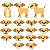 Funny dogs expressing emotions big vector set