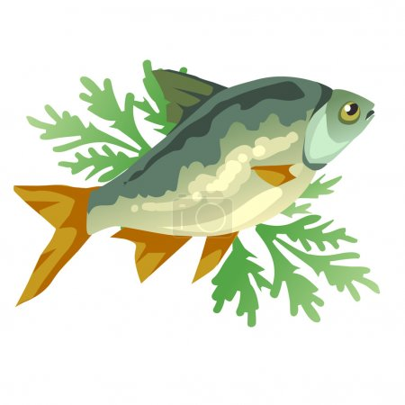 Cooked fish with dill, vector icon food