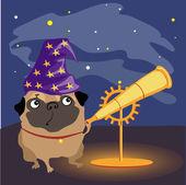 Scientist dog pug watching the stars