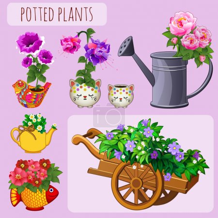 Unusual flower pots on a pink background