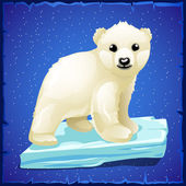 Little polar bear on an ice floe