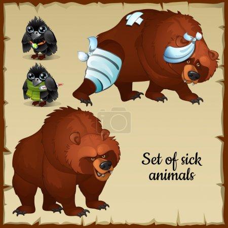 Illustration pour Ours et oiseaux malades et en bonne santé, personnages animaux avec différentes plaintes - image libre de droit