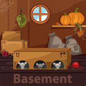Home basement with rodents boxes and food