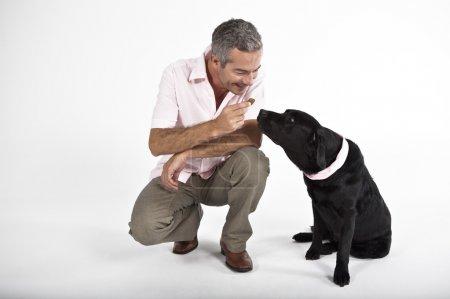 Man playing with Labrador dog