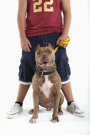 Photo pour Portrait d'adolescent garçon vêtu de vêtements de sport avec chien pit-bull - image libre de droit