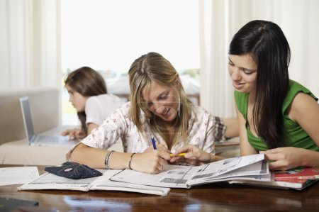 Teenage students doing homework