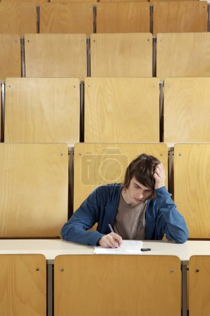 Student studying at the desk