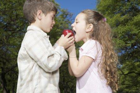 Foto de Pequeño niño y niña con manzana roja con su boca - Imagen libre de derechos