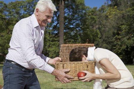 Foto de Mujer sosteniendo una manzana y mirar en la cesta - Imagen libre de derechos