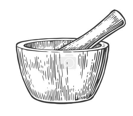 Illustration for Mortar and Pestle. Vintage vector engraved illustration - Royalty Free Image