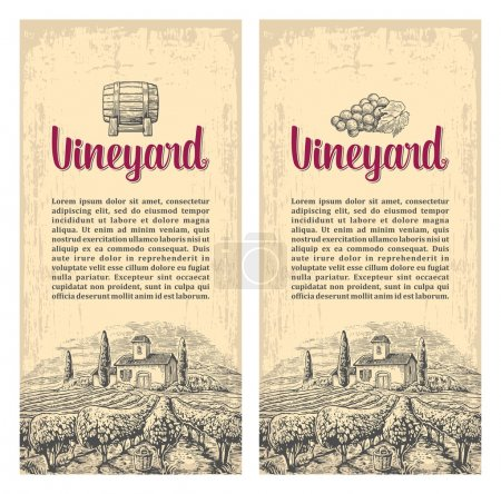 Rural landscape with villa, vineyard fields and hills. Vector engraving drawn vintage illustration. Old paper beige texture background. For label, poster, vertical banner