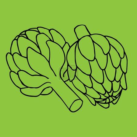 doodle illustration of artichoke
