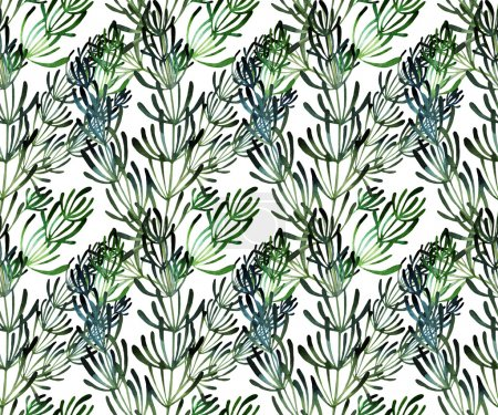 Watercolor rosemary pattern