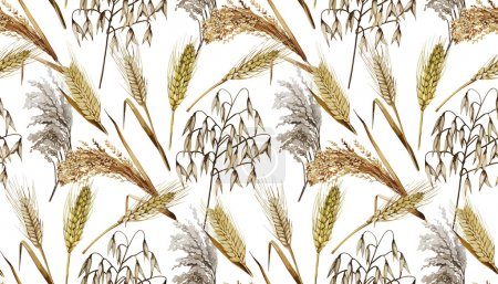 Illustration for Watercolor cereals. Wheat, millet, barley, rye, oats and rice. Vector seamless pattern - Royalty Free Image