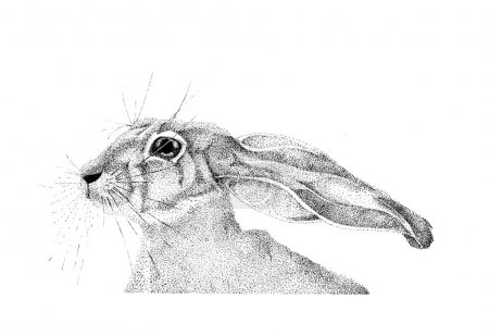 Photo for Graphics handmade rabbit technology from points - Royalty Free Image