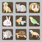 Icon set with home animals silhouettes of pets on multicolor stylish banners Vector Icon set with silhouettes of pets on brown buttons Dog cat guinea pig rabbit fish parrot rat turtle and iguana in flat style