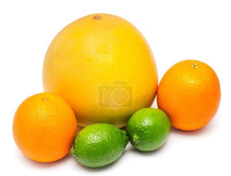 Foto de Una variedad tropical de frutas limones, naranjas y pomelo aislado sobre fondo blanco - Imagen libre de derechos